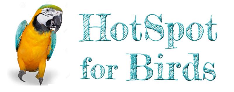 HotSpot for Birds - An Avian Resource